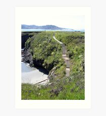 Steps to Marin Headlands Art Print