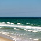 Waves On The Atlantic Coast by Cynthia48