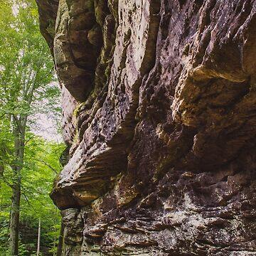 Rim Rock, IL by lindsayosborne