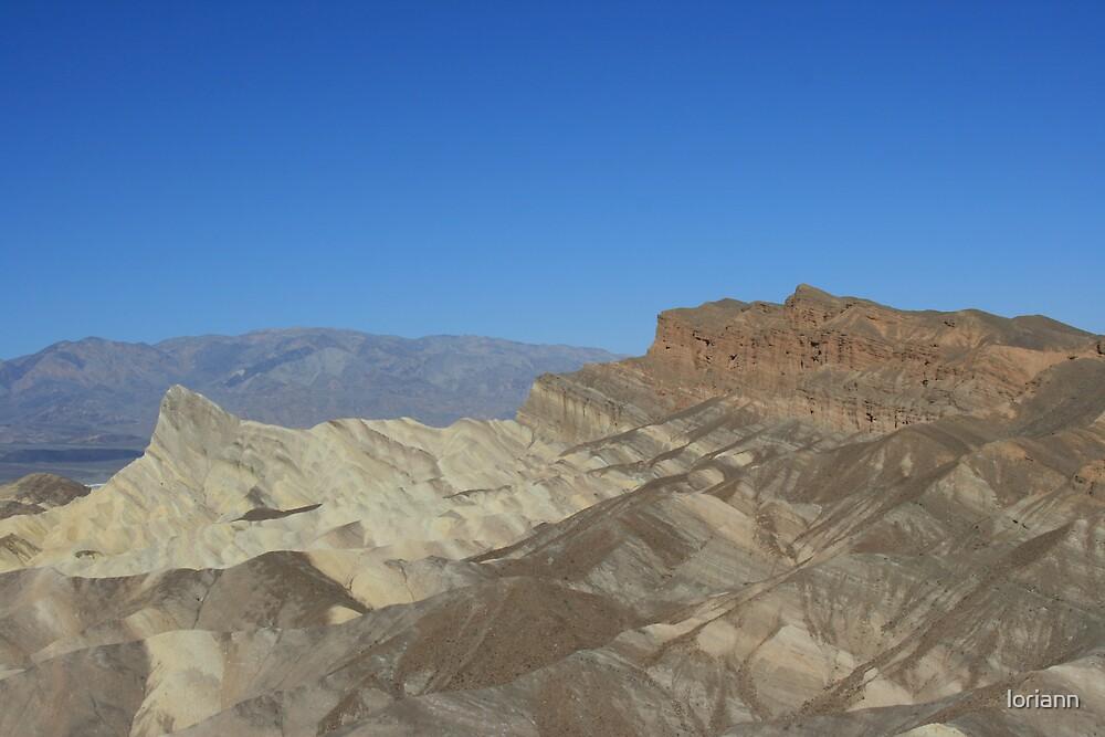 death valley beauty by loriann