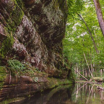 Rim Rock Stream by lindsayosborne