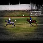 Yes, Polo In Ecuador by Al Bourassa