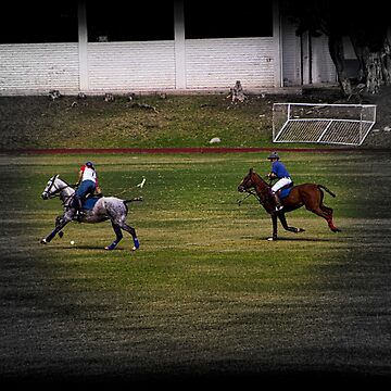 Yes, Polo In Ecuador by alabca