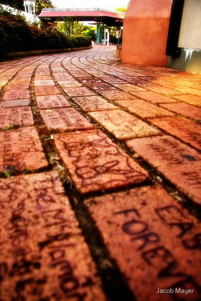 Brick path by Jacob Mayer