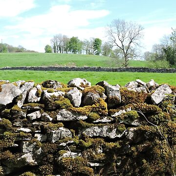 Stone Walls in the Lakes by CreativeEm