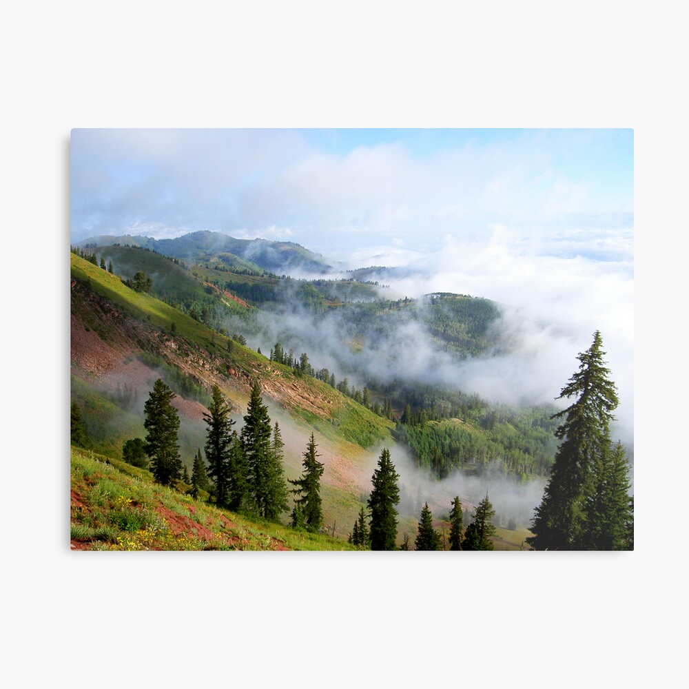 Here comes the day Metal Print