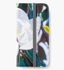 White Magnolia Flower iPhone Wallet/Case/Skin