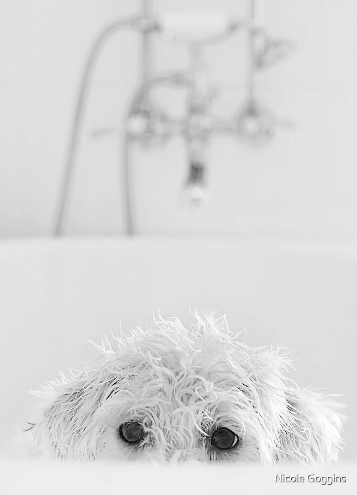 Playing Peek-a-boo... by Nicole Goggins
