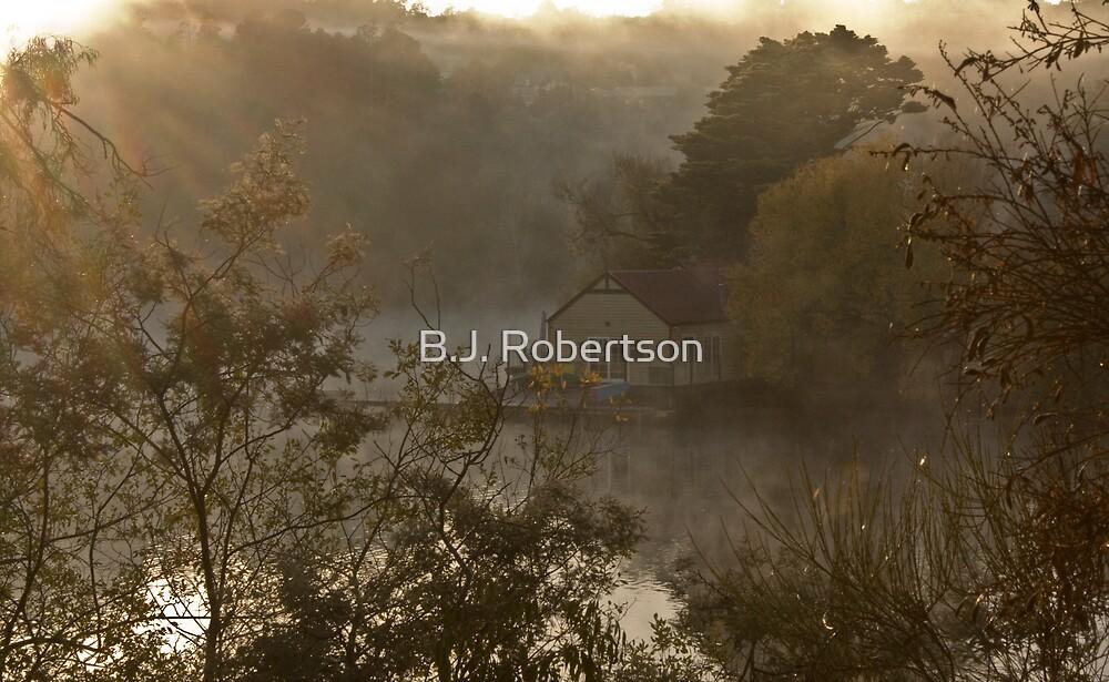 Daylesford Fist Light! by B.J. Robertson