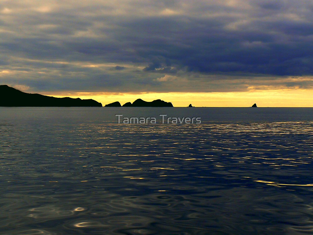 Before the Storm by Tamara Travers