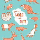 You're Weird, but Cute by Amy Bouchard