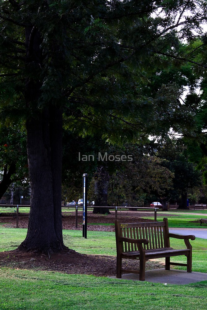 Park Bench by Ian Moses