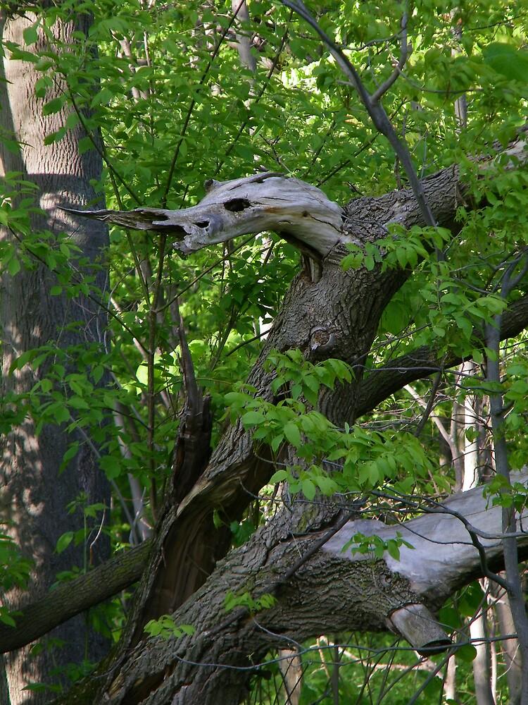 Tree Serpent by irishpatti
