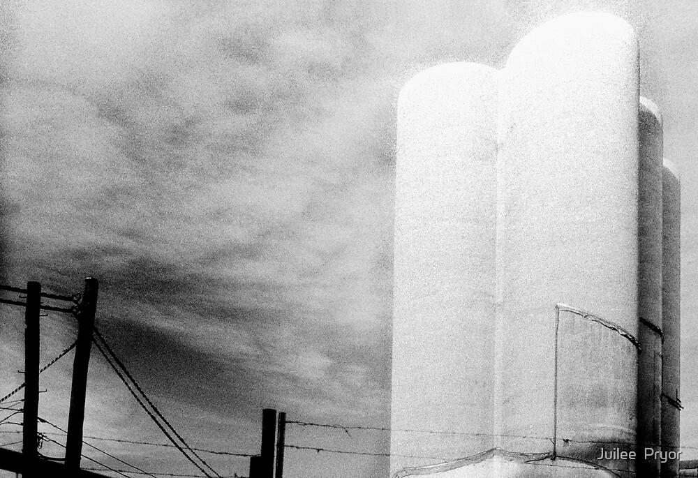 silo four by Juilee  Pryor
