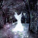Magic Forest by Scott Mitchell