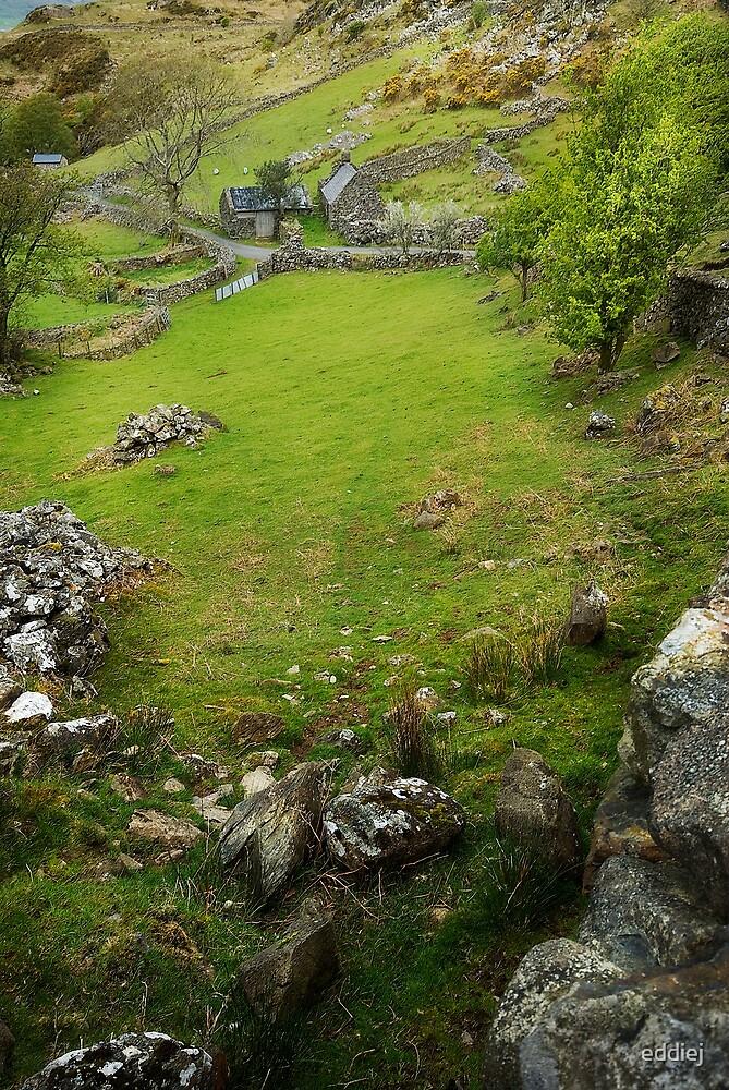 Old farm - Llyn Cregennen by eddiej