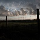 Fence by Aaron Holloway