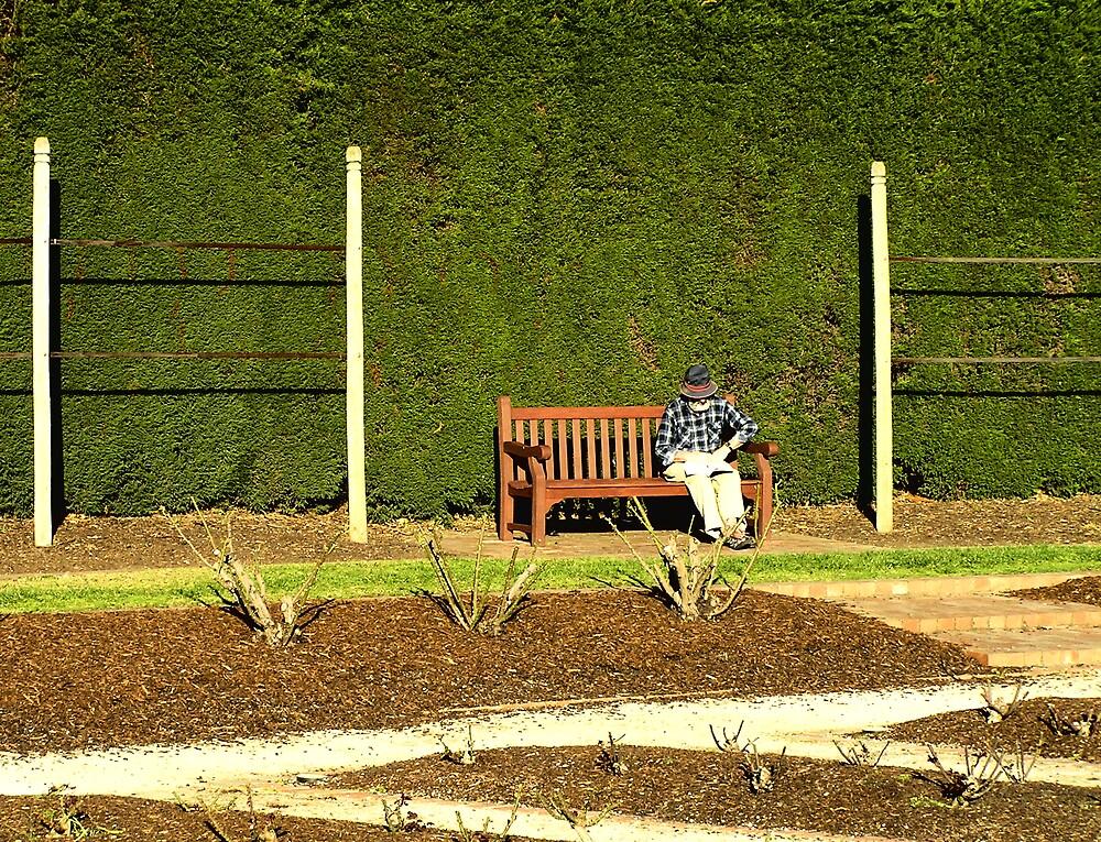 St Kilda Botanic Gardens by Christopher Biggs