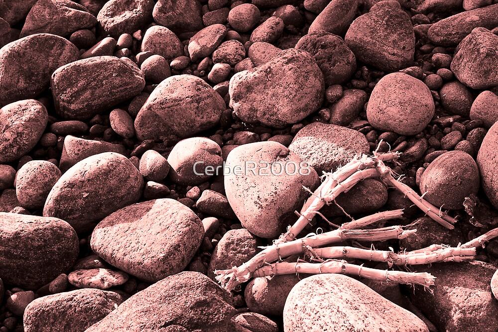 Sea stones. by CerbeR2008