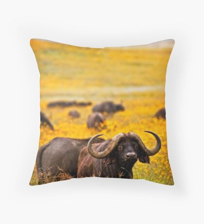 Cape Buffalo in Yellow Throw Pillow