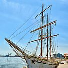 Tall  Ships  by Lanis Rossi