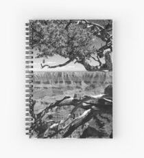 Tree Overlooking the Canyon Spiral Notebook