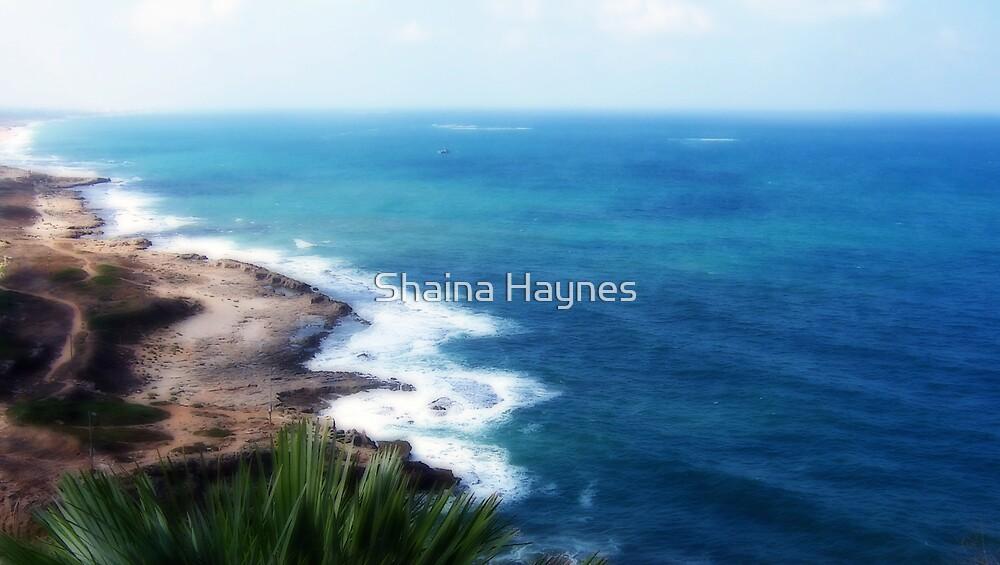 Rugged Coastline by Shaina Haynes