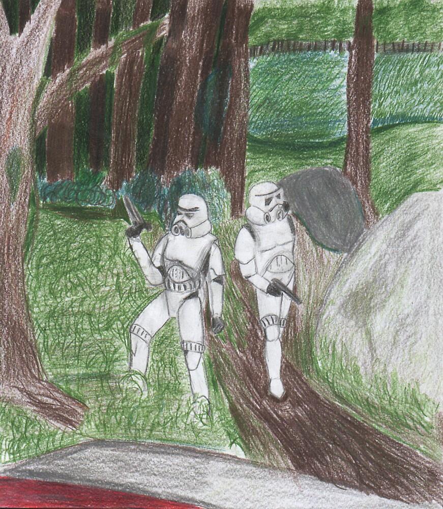 Stormtroopers on patrol  by morri