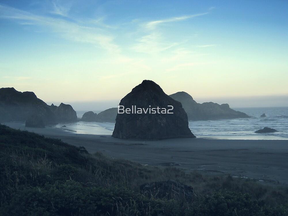 Seal Rocks2 by Bellavista2