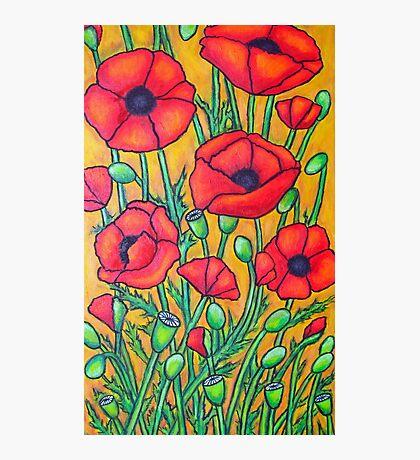 Poppies II Photographic Print