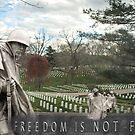 Freedom by elisab