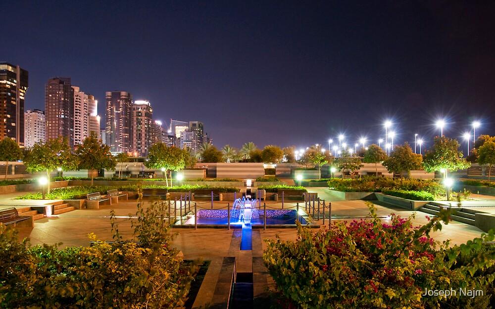 My Local Park by Joseph Najm