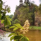 Flower Feature in Buttes Chaumont Park by Michael Matthews