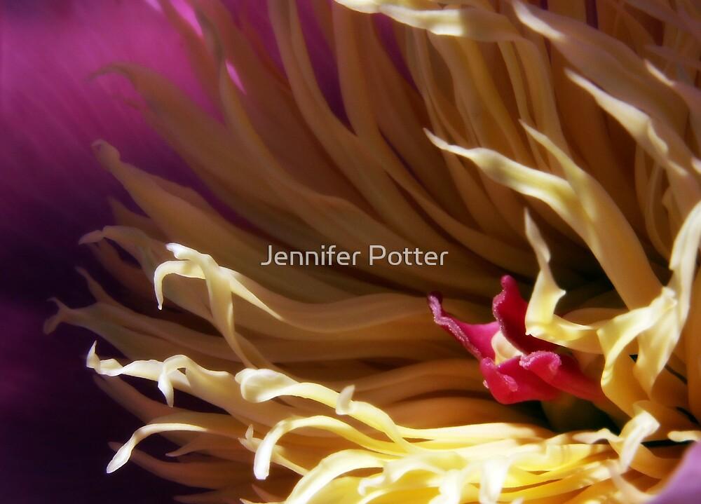Reaching Out by Jennifer Potter