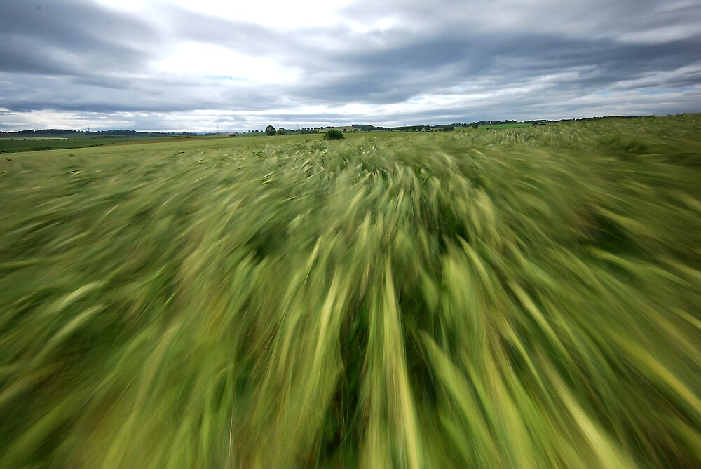 Moving field by james  thow