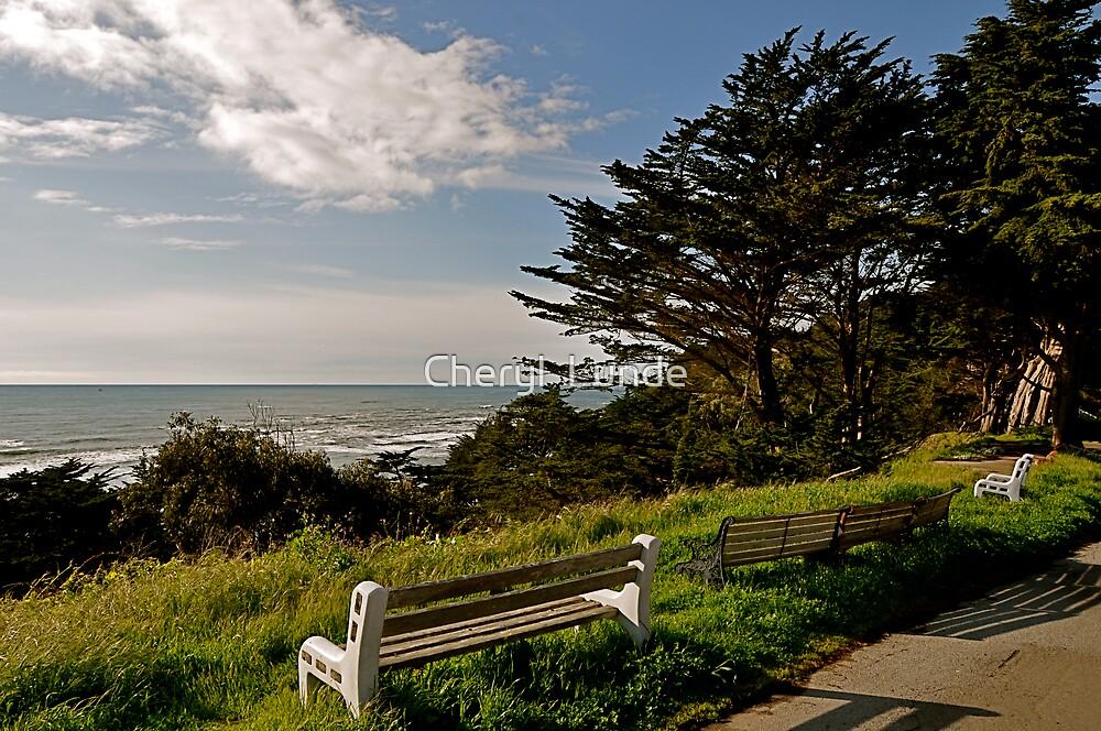 Ocean Vista by Cheryl  Lunde