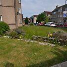 At A Guess, The Neighbour's Aren't Gardeners  by Nik Watt