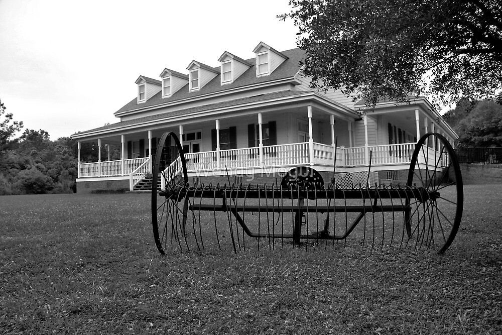 Old Santee Canal Park Museum House by Wendy Mogul