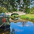 Mooring on the Oxford Canal by Viv Thompson