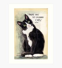 CITATION CAT - COLETTE 2 Art Print