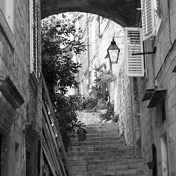 Stairway to Dubrovnik by deltagphoto