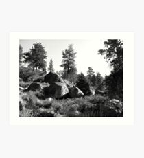 Black And White Landscape 14  Art Print