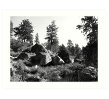 Black And White Landscape 14  Art Print
