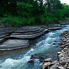 Lee Creek by Dan Holtmeyer