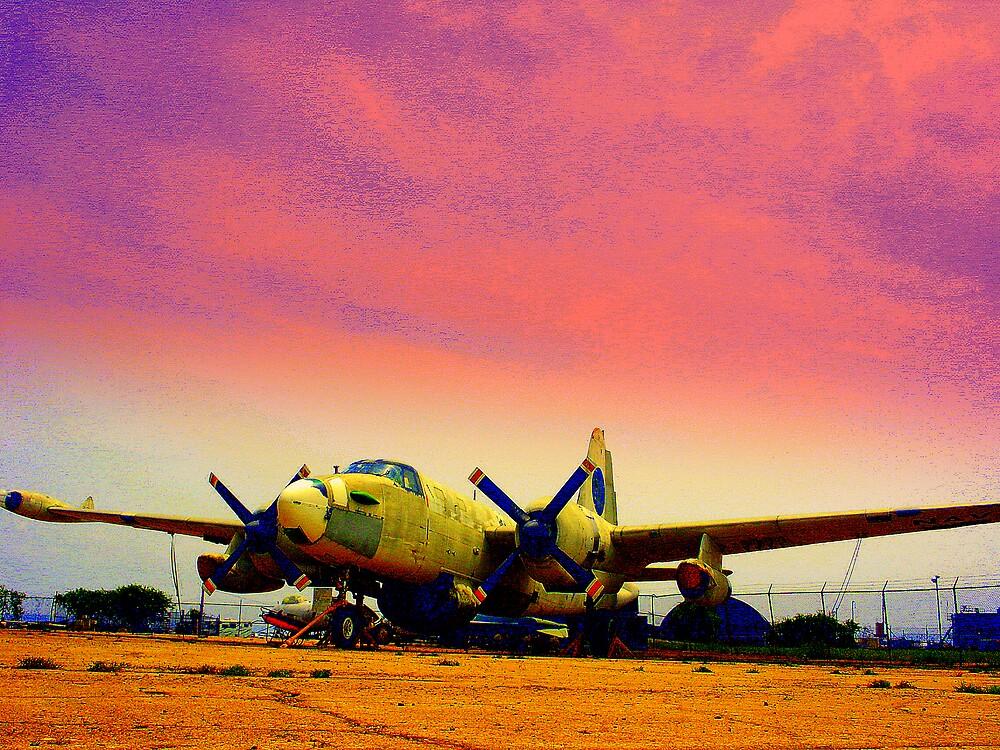 Purple Haze Plane by rtographsbyrolf