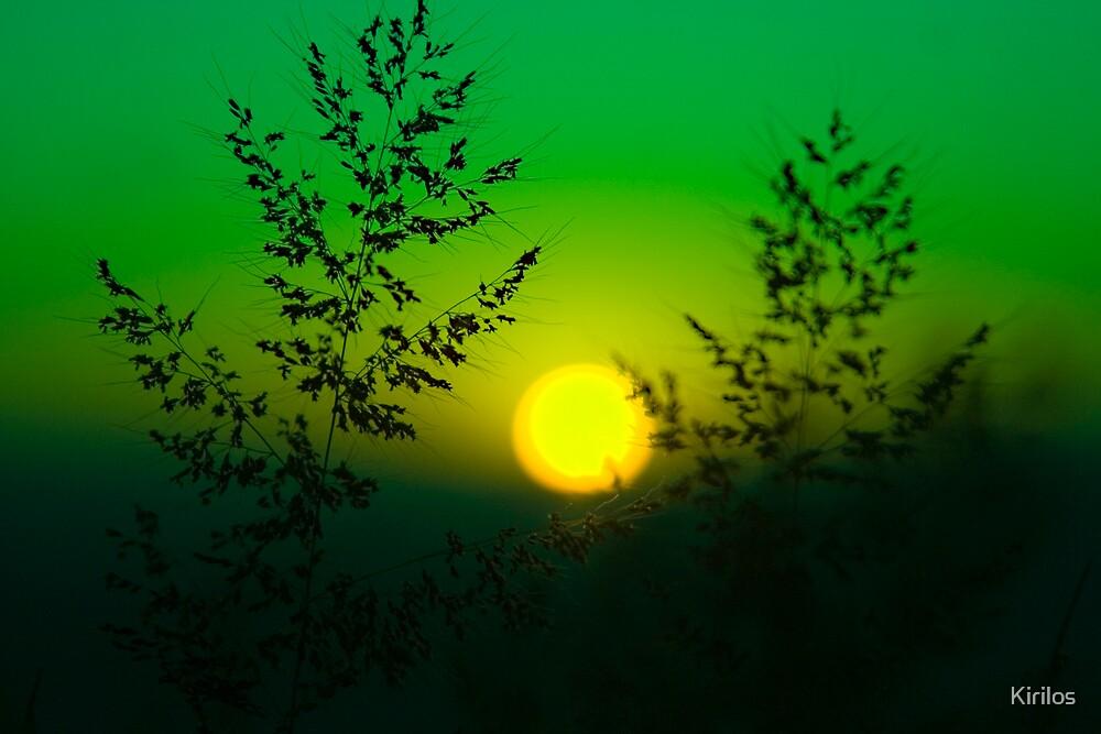 Sun by Kirilos