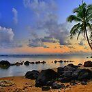 Hawaiian Island Hopping by DJ Florek