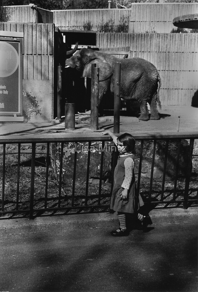 Girl and the Elephant by Lisa Mintz