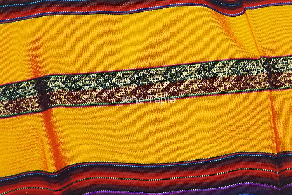 Native Blanket by June Tapia