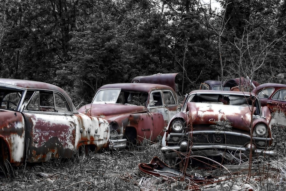 Junkyard by Jason  Burris